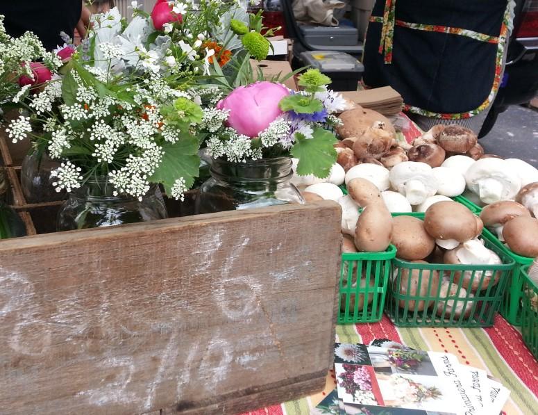 La Primavera Farms Flowers