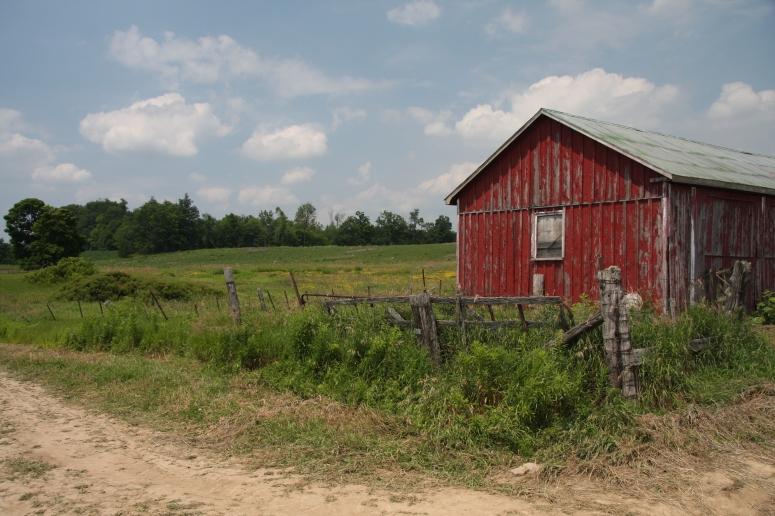 Weathervane Farms